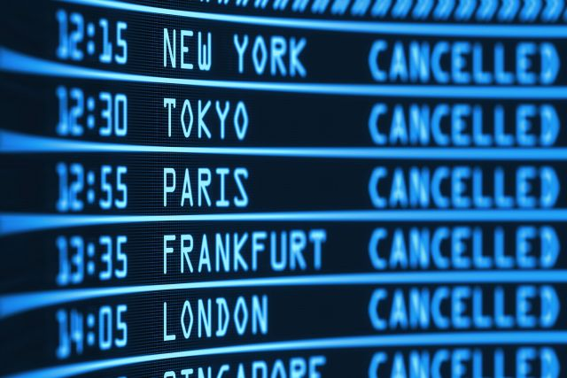 Crucial travel information and updates delivered directly to travel managers
